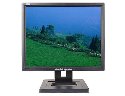 Εικόνα Οθόνη Dell E171FPD