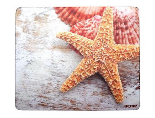 Εικόνα Acme Sea Shells 4770070868003